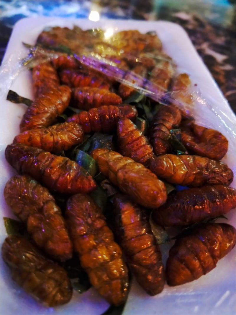 Silk Worm Larvae, Photo By Fah Sasinan, Cozy Bar