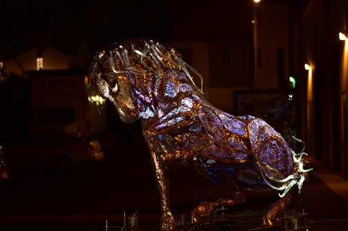 Lux Maximus At Night