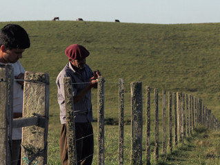 Filme gaúcho Rifle vence XII Panorama Internacional Coisa de Cinema
