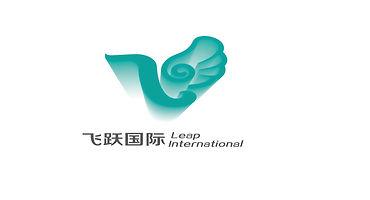 飞跃国际lOGO长方形.jpg