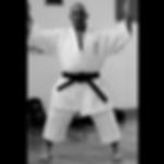 Seiwa Kai Goju Ryu