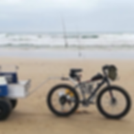 info@motorized.co.za