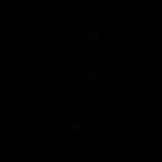 nah bro logo.png