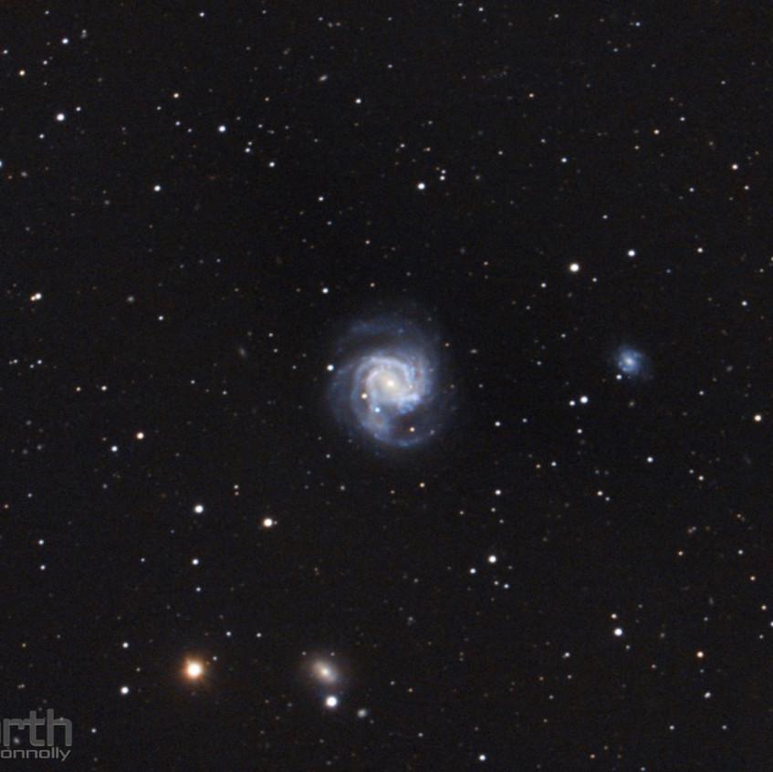 SN2020jfo in M61
