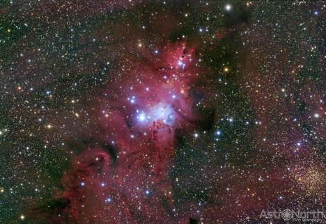Christmas Tree Cluster and Cone Nebula