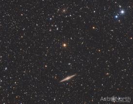 NGC891