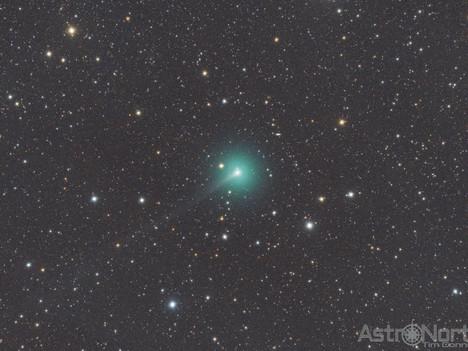 Comet C/2019 Y4 ATLAS