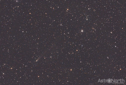 Comets C2018 N2 ASASSN and 260P/McNaught