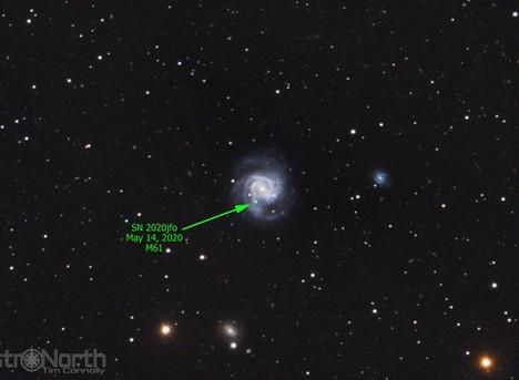 Supernova 2020jfo in M61