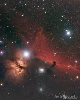 Horse Head & Flame Nebula