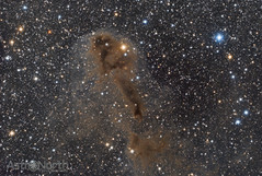 Lynds Dark Nebula, (LDN) 1251