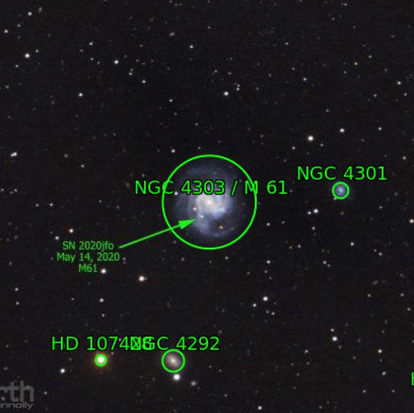 SN2020jfo in M61 annotated