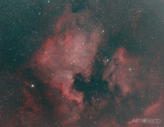 North America & Pelican Nebula