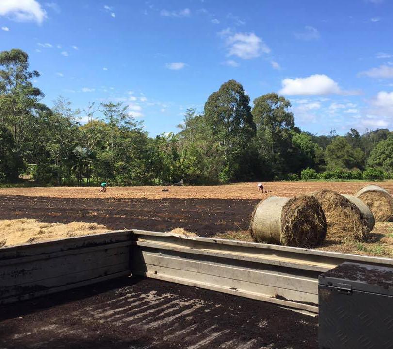Mulching fields on an organic farm.