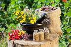 Naturopathy Holistic Health | Herbal Medicine