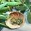 Thumbnail: Shamrocks and Gold d20- Handmade Dice Earrings