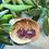 Thumbnail: Purple w Bats copper ink d20- Handmade Dice Earrings
