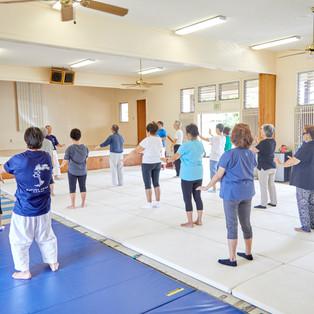 Kupuna Aikido_07.11.18_1804.jpg