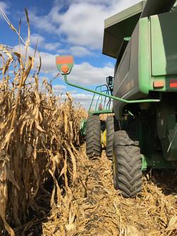Traer Agriculture, Traer, Iowa