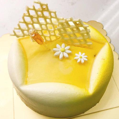 [Baking Class] Honey Cheese Cake