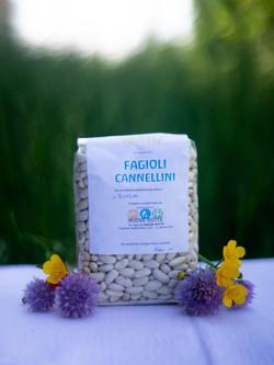 Fagioli_Cannelini
