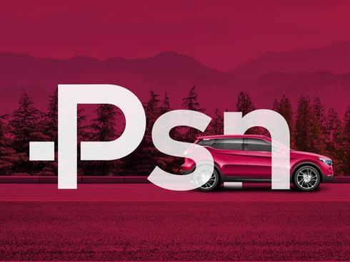 PSN Auto Liners