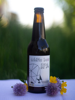 Beer_piccolo