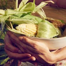 skye holding corn.jpg