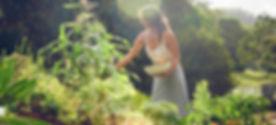 Wybalena | Organic Farm | Byron Bay | | Retreat Centre | Yoga