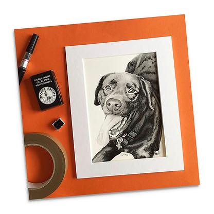 Dog Portrait.png