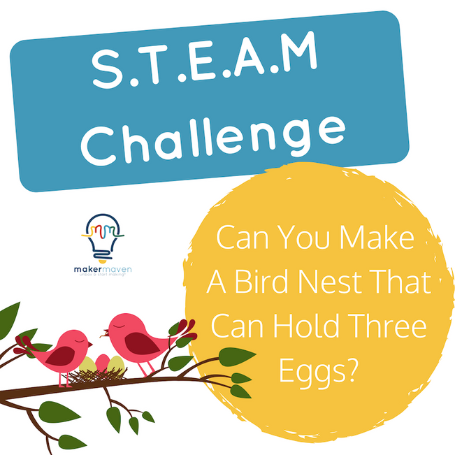 Can You Make A Bird Nest That Can Hold Three Eggs?