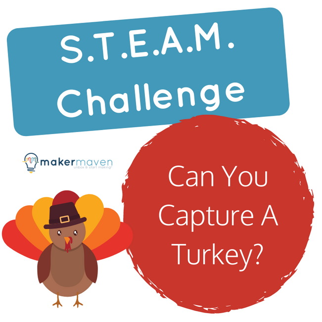 Can You Capture A Turkey?