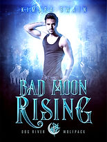 Bad Moon Rising EBOOK FINAL.jpg