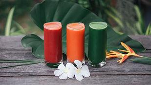 Juice Cleanse Program 1.jpg