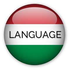 Language_icon_240x240_árnyékos_nagybetűs