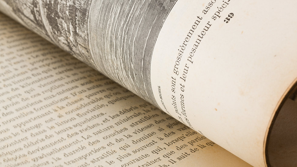 A Secret History of Witches: A Novel [Copy 2]