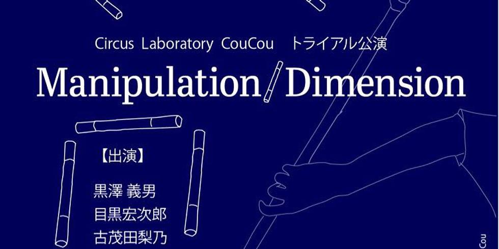 『Manipulation / Dimension 』