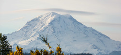 Mount Rainer 2015