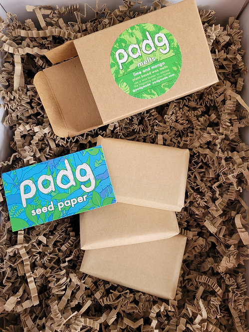 Padg Lime and Mango Melts