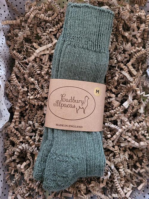 Cadbury Alpaca Men's Walking socks size M (7-10)