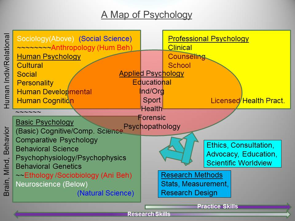 the difference and relation of psychology to science Critical thinkers notice the inferences they are making, the assumptions upon which they are basing those inferences, and the point of view about the world they are developing.