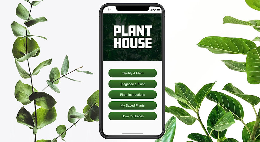 Walkthrough video of a houseplant diagnostic tool