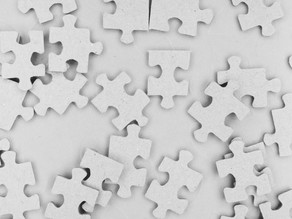 Fitting The Behavioral Science Piece In The Organizational Puzzle