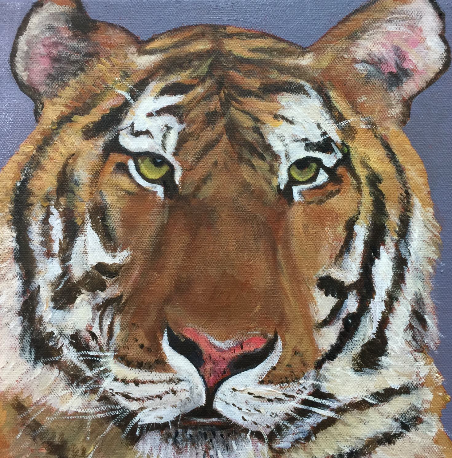 Nice Tiger