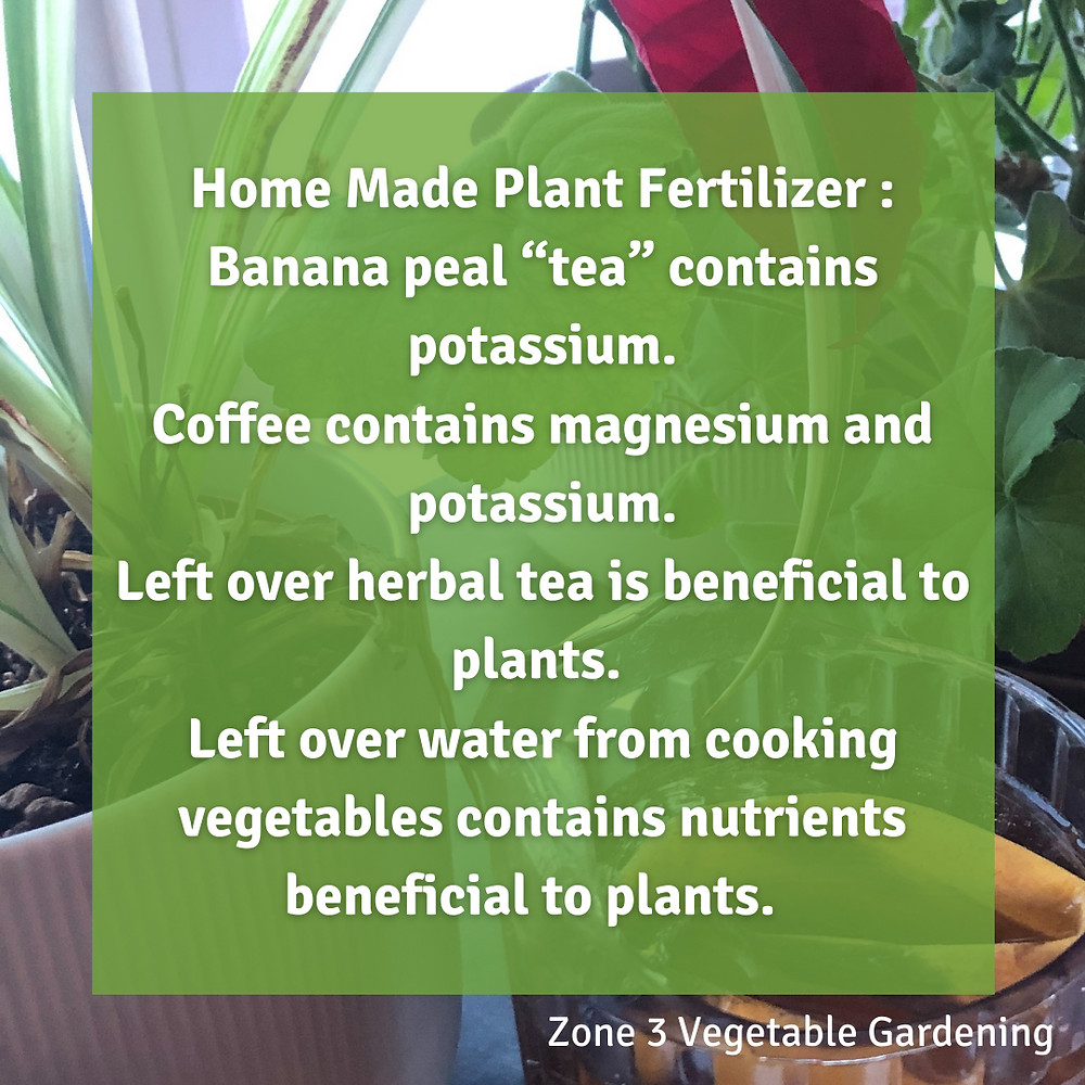 Learn how to make homemade organic DIY plant fertilizer using these tips.  Make your own homemade vegetable fertilizer!