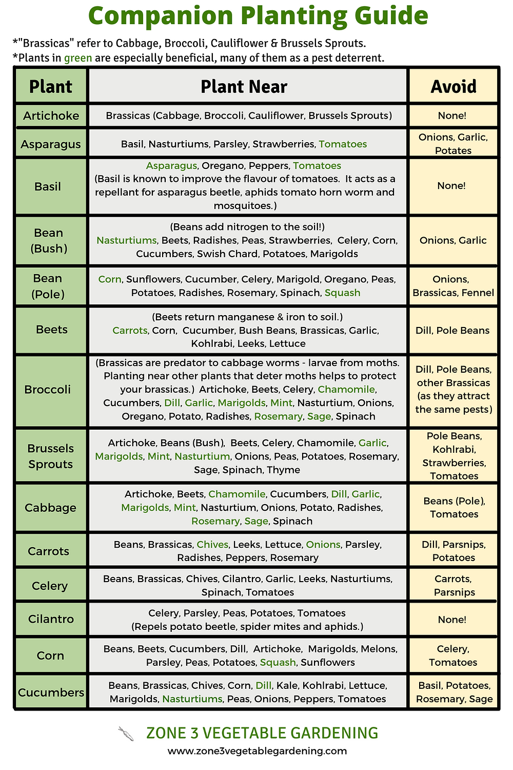 Free printable vegetable and herb companion planting guide, from Calgary Alberta.