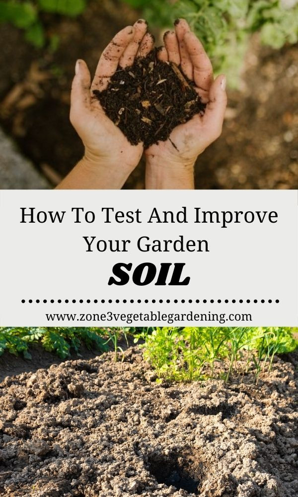 Tips and tricks for DIY testing and improving your backyard raised bed or inground vegetable garden soil in zone 3 Calgary and Edmonton Alberta.