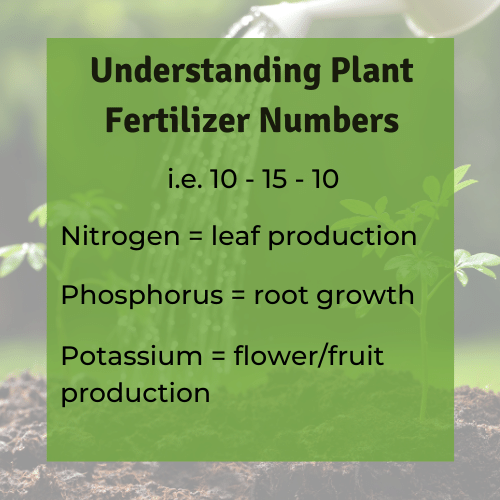 Use this chart to figure out what the best fertilizer for vegetables is and what the numbers on fertilizer mean.