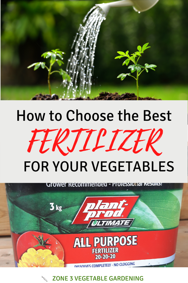 Learn hot to choose the best fertilizer for vegetable, plants and flowers.  Also learn how often to fertilize your garden plants.
