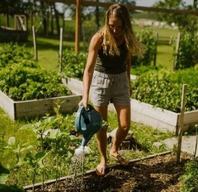 How Often Should I Water My Garden?